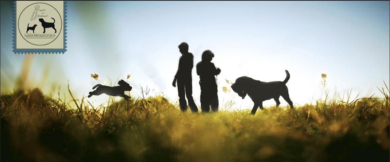 Beagle és Bloodhound Fajtások Kynológiai Egyesülete