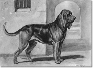 edwin-megargee-dog-print-bloodhound
